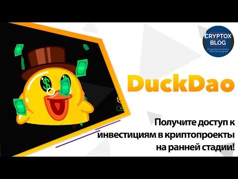 DuckDao - Получите доступ к инвестициям в криптопроекты на ранней стадии!