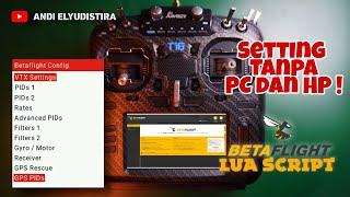 Cara Memasang Betaflight LUA Script Setting PID Rates VTX dan GPS dari Remote