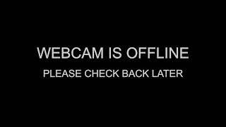 Webcam @ Vleeshuis Oudenaarde – Belgium