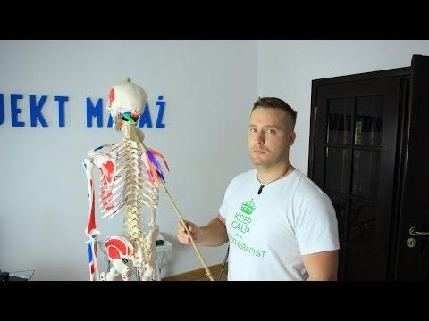Mechanizm bólu w mięśniach