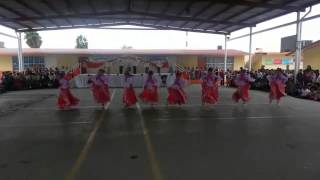 Danza folklorica la marieta