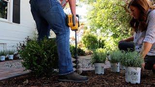 Planting Lavender! 💜🌿// Garden Answer
