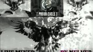 RADIO SHOW [PROUD EAGLE] @ DRUM & BASS NIGHT #96 @ LIVE MIXED BY NELVER (08.05.2014)
