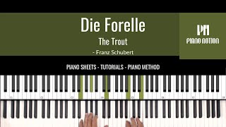 Die Forelle | The Trout