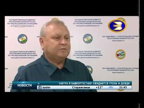 В Белокатайском районе от удара молнии пострадало два человека