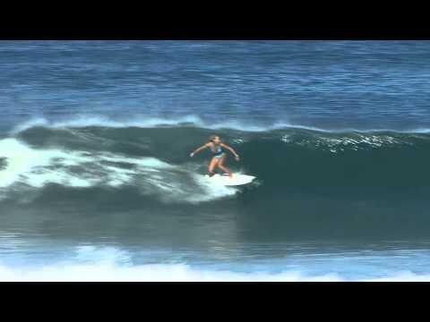 """BIC Surf 5'10"""" Fish"""