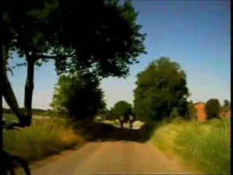 Zondagochtend rit fietsclub Stevensbeek