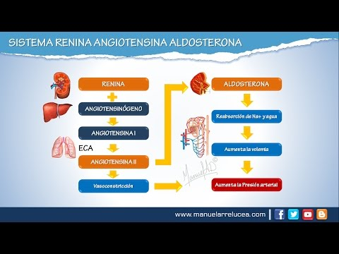 Tratamiento de grado 3 medicamentos para la hipertensión