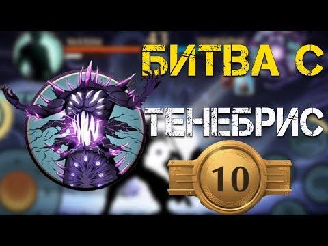 Shadow Fight 2 БИТВА С ТЕНЕБРИС И 10 ДАН