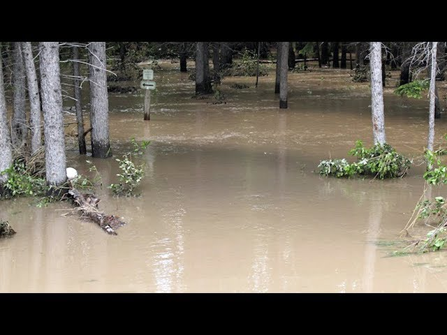Река подтопила дачи и детский лагерь
