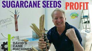 TuboBiz Sugarcane Machines(Official Channel) - मुफ्त