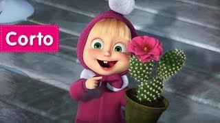 Las Canciones de Masha - ☀️ Cuando Los Cactus Florecen 🌸 (Llego la primavera!)