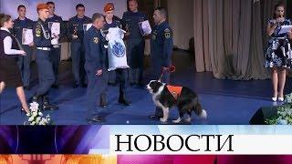 В Академии МЧС России чествовали победителей X-го всероссийского фестиваля «Созвездие мужества».
