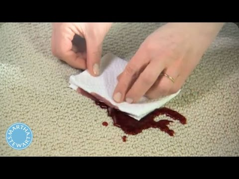 How to Remove Any Carpet Stain - Martha Stewart