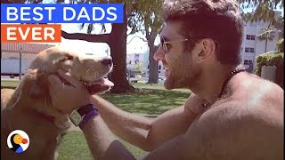 BEST Animal Dads of ALL TIME Compilation | The Dodo Best Of
