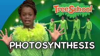 Photosynthesis | Two Little Hands TV | Educational | Kids Songs