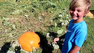 Taking the Family to the Big Stone Pumpkin Patch