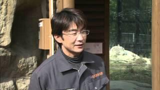 平川動物公園ホワイトタイガー飼育員・知屋城晃さん2012年1月25日放送