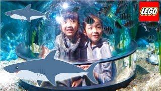 Kan&Akiサメがみれる潜水艦にのったよ!LEGOLAND