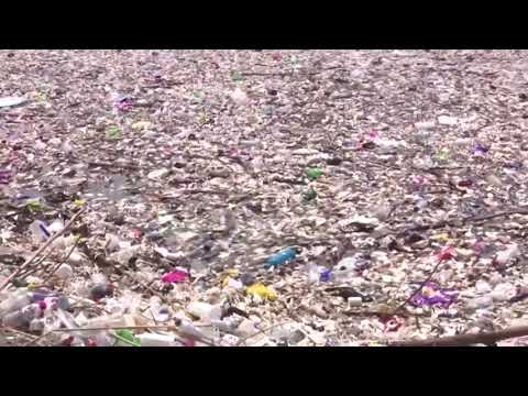 Massive trash heaps wash up on Honduras beaches
