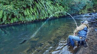 Fly Fishing one of the Best Rivers in the World! (part 1)