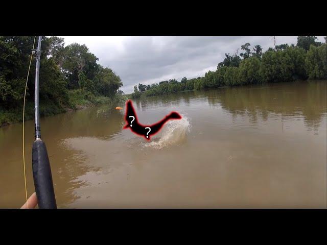Catching A DINOSAUR Alligator Gar From Kayak