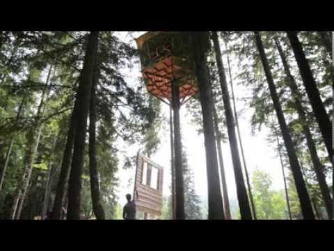 Ağaçtan Ev Yapımı