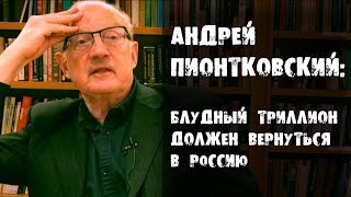 А. Пионтковский:  Блудный триллион должен вернуться в Россию