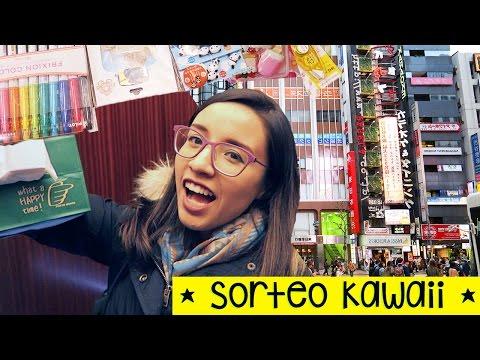 ¡ASÍ SON LAS PAPELERÍAS EN JAPÓN! + Sorteo Kawaii! [CERRADO] Tokyo ✄ Craftingeek