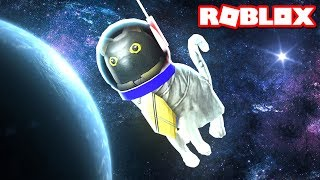 SIR MEOWS A LOT GOES TO SPACE