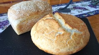 """Ultimate Introduction to No-Knead """"Turbo"""" Bread… ready to bake in 2-1/2 hours"""