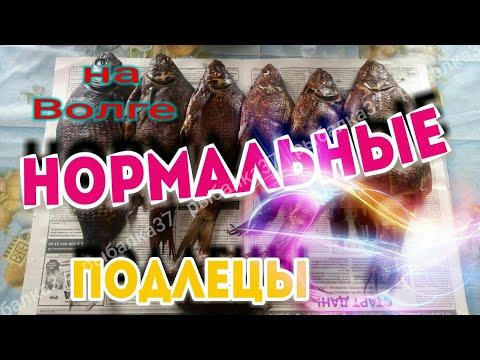ПОДЛЕЦЫ С ЗОЛОТОГО КОЛЬЦА РОССИИ!!!
