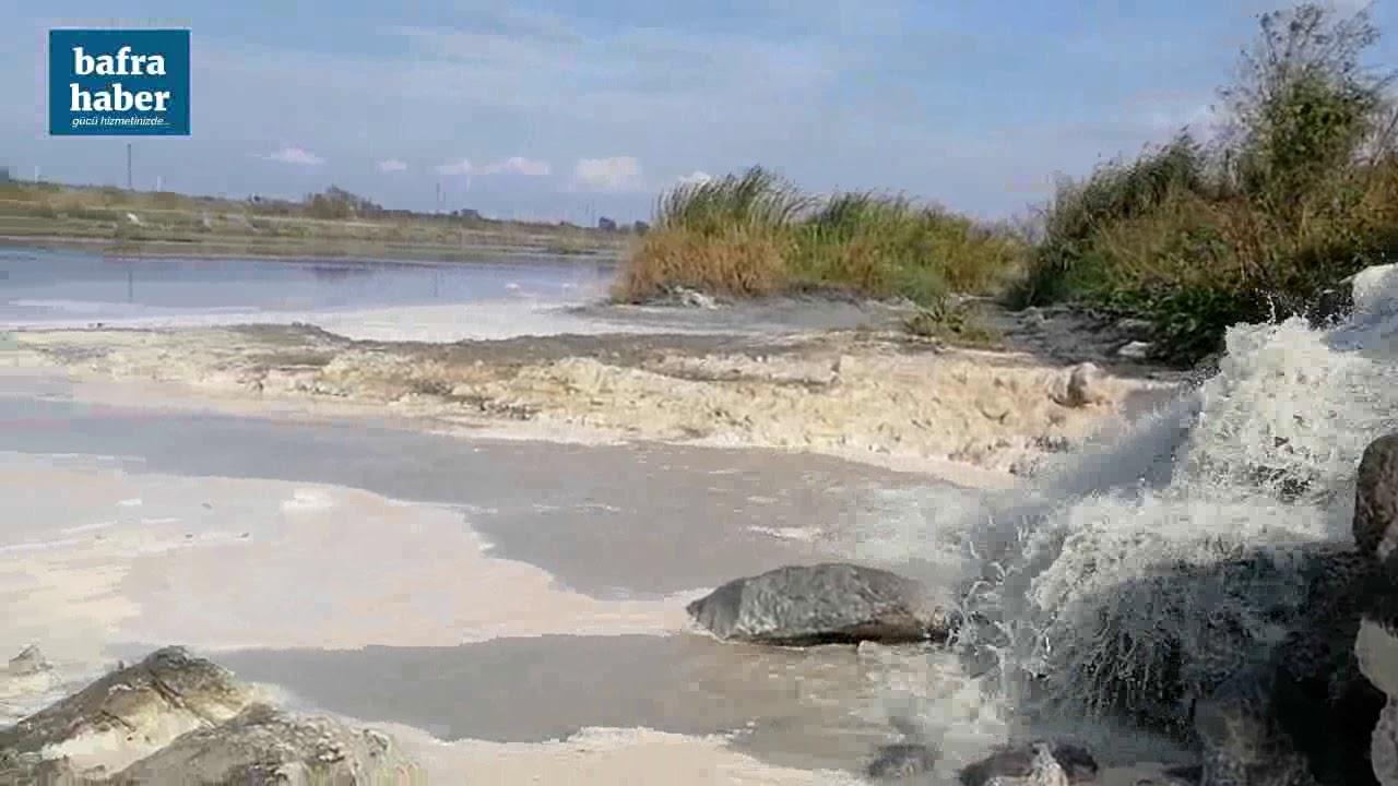 Bafra'ya Yayılan Kötü Kokunun Kaynağı Osb'deki Balık Tesisi