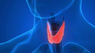 Reportage de Brigitte Fanny Cohen sur France 2 sur La Thyroïdectomie sans Cicatrice ( TOETVA )