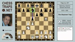 0871 Queens Gambit Declined The Elephant Trap