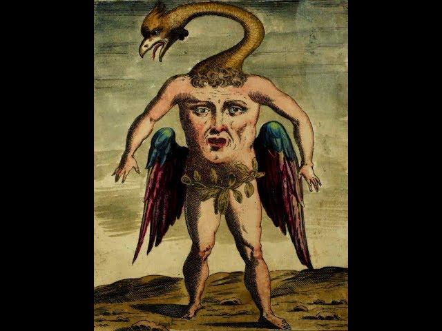 История Монстров. Книга Шедевр 1642 года