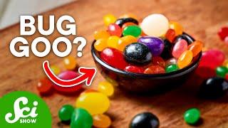 7 Bizarre Uses for Animal Secretions - Video Youtube