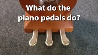What do the pedals on a piano do? | Cunningham Piano Company, Philadelphia, King of Prussia, PA