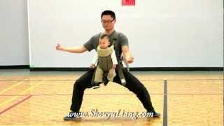 90 year old hung kuen master leung daiyau performs the snake guiding chen style taiji 56 with 9 months old baby fandeluxe Gallery