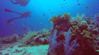 preview picture of video 'GoPro: Sudan - Into the deep 2014'