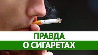 Интересные факты о курении. Правда о сигаретах!