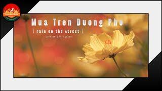 Mua Tren Duong Pho ( Rain in the street )/Toronto Mua He Mua Roi