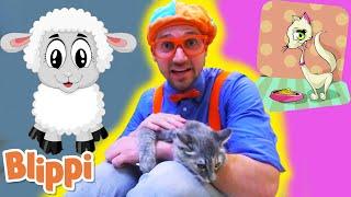 BLIPPI - Humane Society - Learn | ABC 123 Moonbug Kids | Fun Cartoons | Learning Rhymes