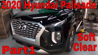 2020 Hyundai Palisade! Let's Talk About Thin, Soft Clear Coat! Part 1
