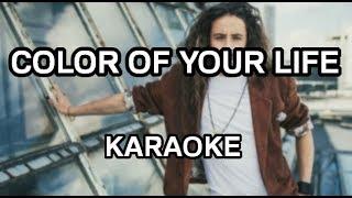 Michał Szpak - Color of your Life [karaoke/instrumental] - Polinstrumentalista