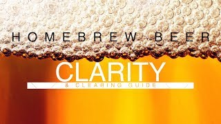 Homebrew Beer Clearing & Clarity Guide 4K HD