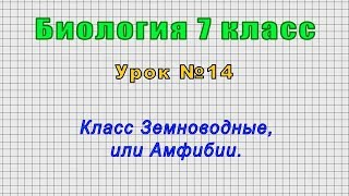 Биология 7 класс Урок 14