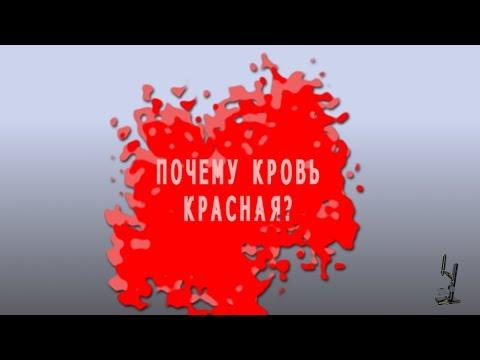 Кровь. Почему кровь красная ? Blood. Why is the blood red?