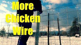 More Chicken Wire