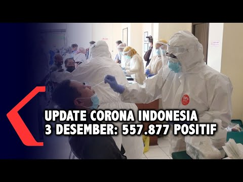 update corona desember positif sembuh meninggal